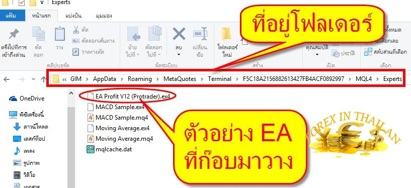 How-to-set-up-EA-on-MT4-exness-broker4