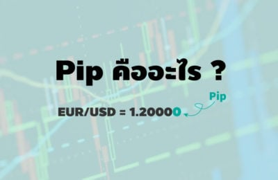 pip forex what is